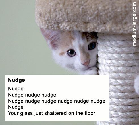 Cat death poem