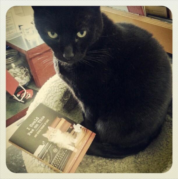 Atticus Kings Books
