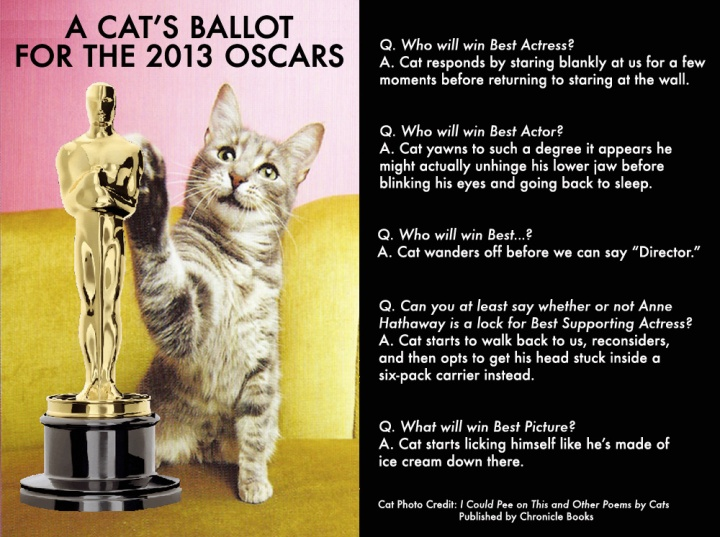 Cat Ballot 2013 Oscars