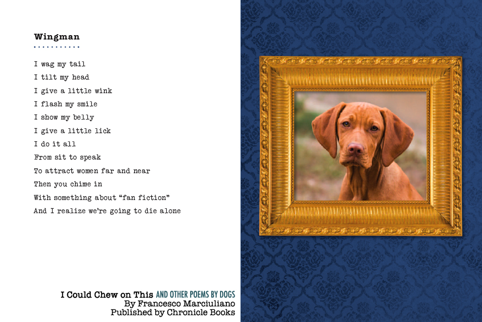 a dog poem to its owner