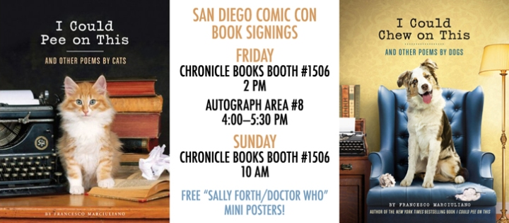 Comic Con Signing Poster Small