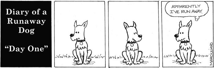 Diary Runaway Dog