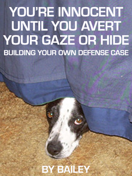 Dog Book Defense Case