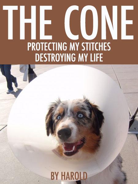 The Cone Book 2