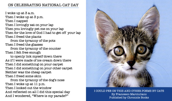 National Cat Day Poem