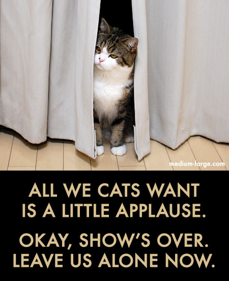 Cat Applause PSA Ad