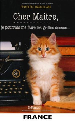 International France Cat Small