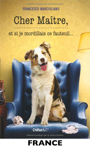International France Dog Small