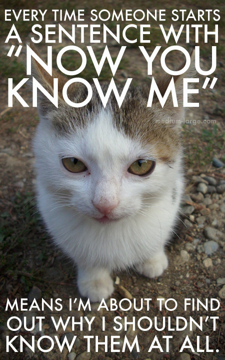 Overwhelmed Cat Know Me