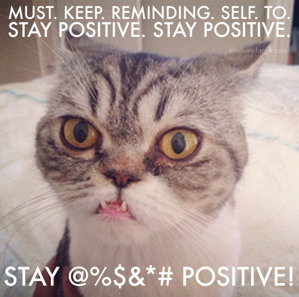 Overwhelmed Cat Positive 2a