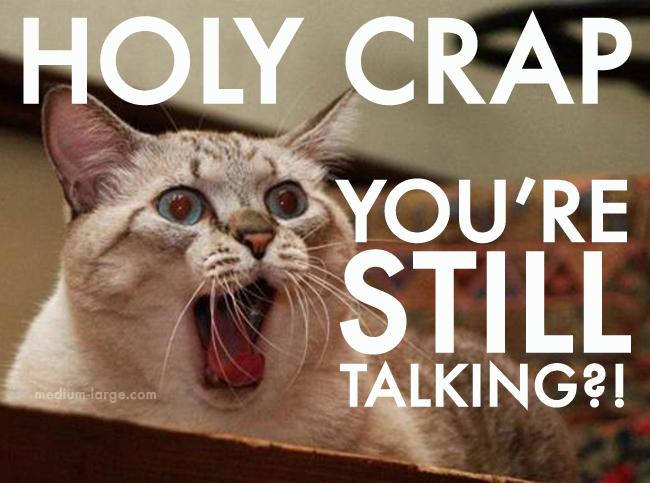 Overwhelmed Cat Still Talking