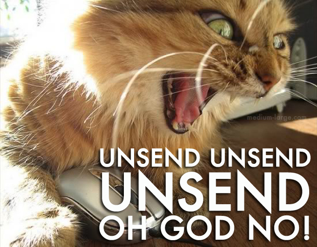 Overwhelmed Cat Unsend
