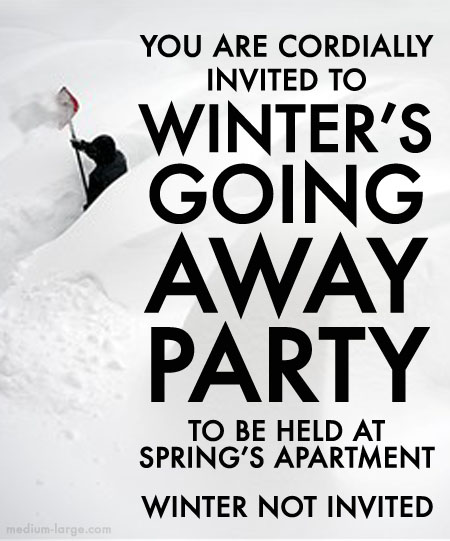 Winter Going Away Invite 2