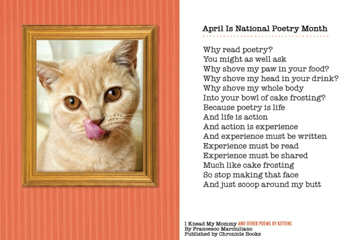 Kitten Poetry Month