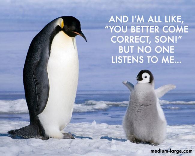 World Penguin Day 2