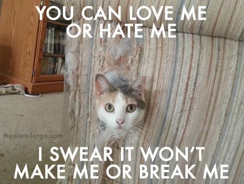 cat-rap-2
