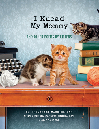 I Knead My Mommy Cat Poems