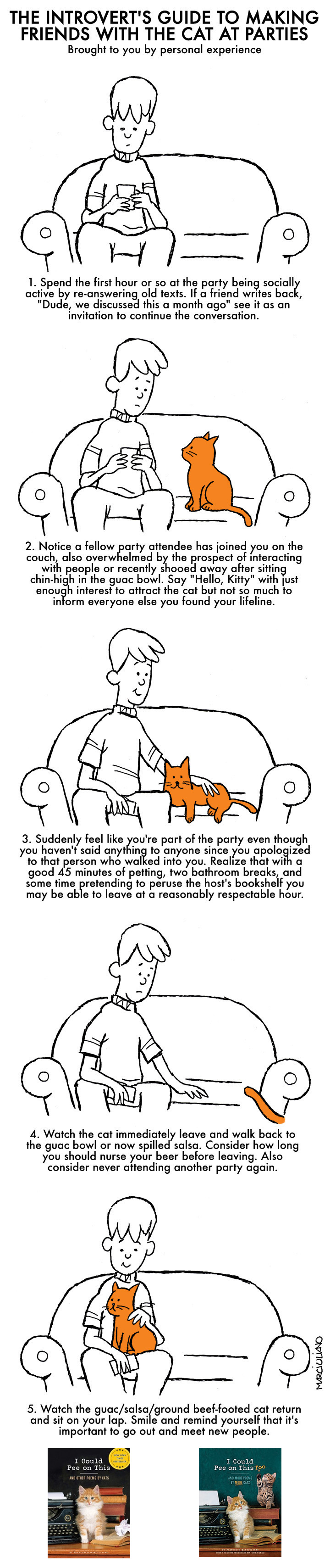 introverts-guide-to-cats-2016a