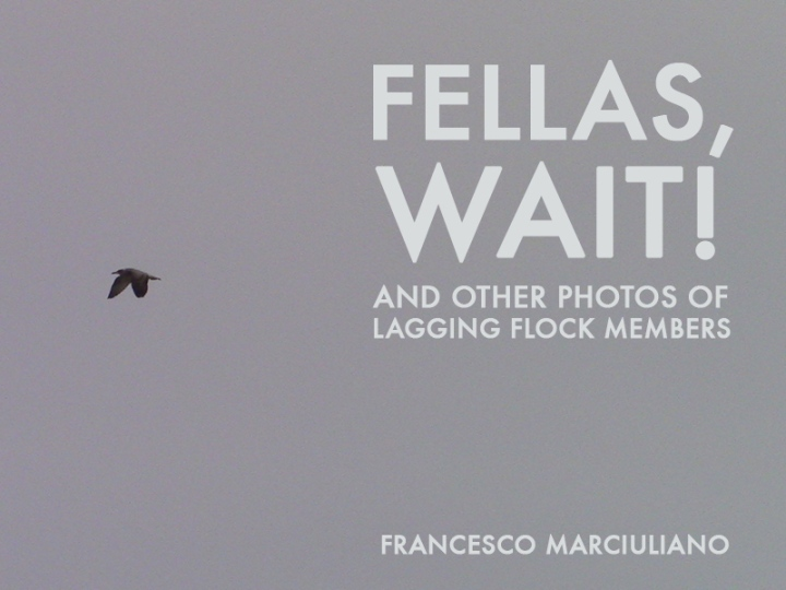 Fellas Wait Coffee Table Book
