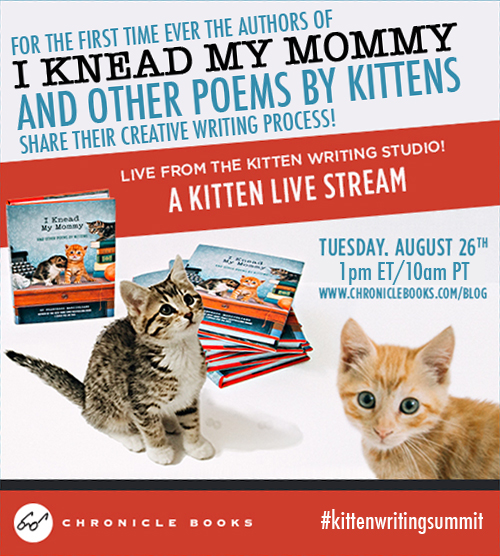 IKMM Live Stream Ad 2