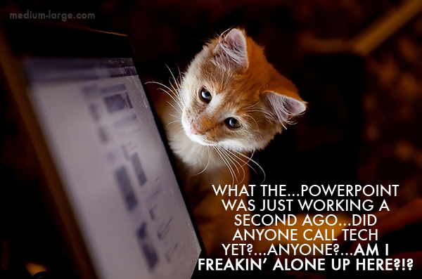 Kitten Lecture 3a