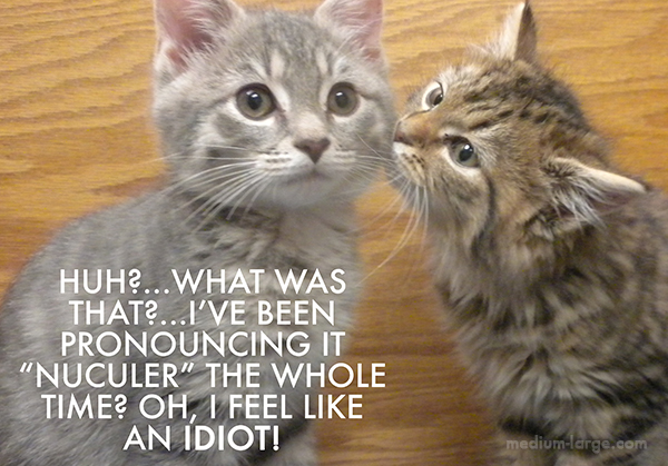 Kitten Lecture 6a
