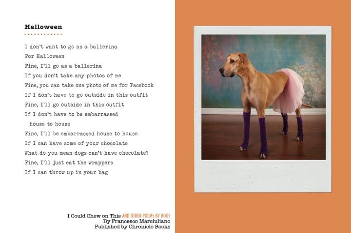 Halloween Dog Poem