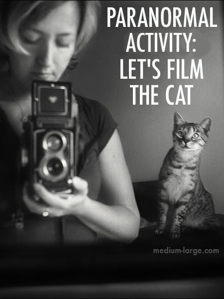 Paranormal Activity Cat 2