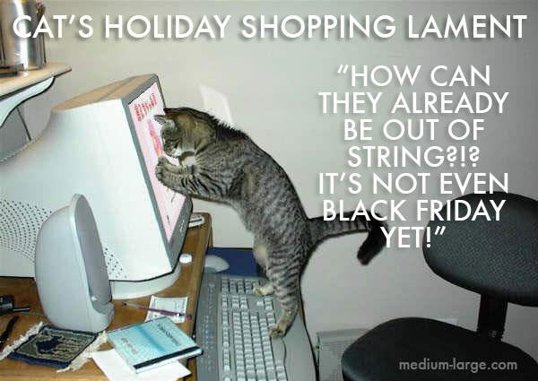 Cat's Shopping Lament 2
