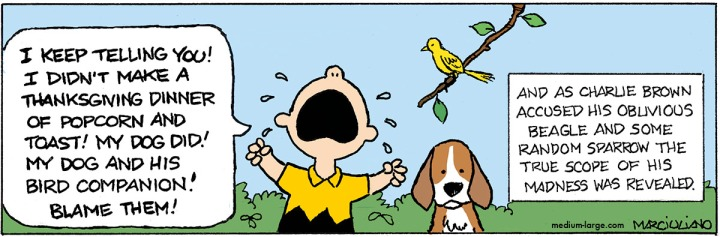 Peanuts Thanksgiving Madness Color 1200