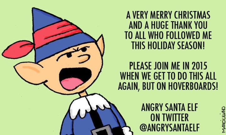 Angry Santa Elf Xmas Thank You 2014