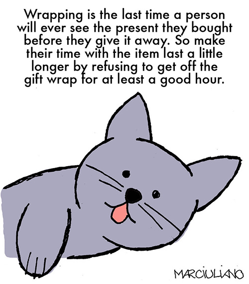 Kitten Holiday Tip 2a
