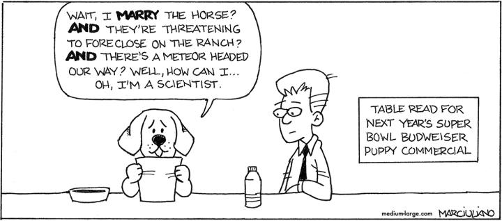 Budweisr Puppy Ad Small