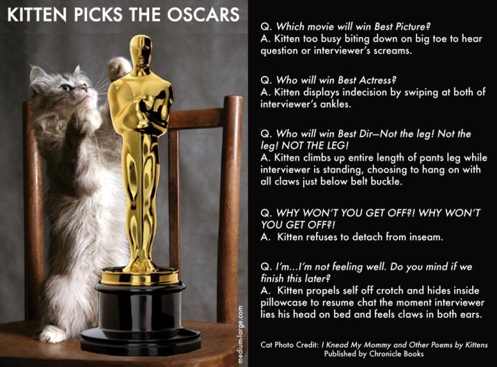Kitten Picks Oscars2