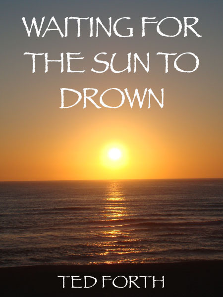 Ted Book Sun Drown