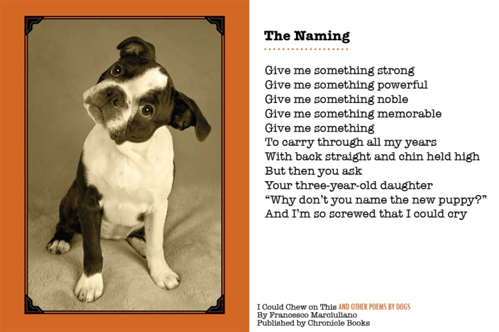 Happy-Puppy-Day-Poem-ML