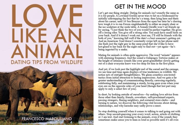 Love Animal Spread 1