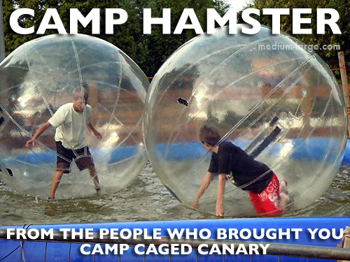 Camp Hamster