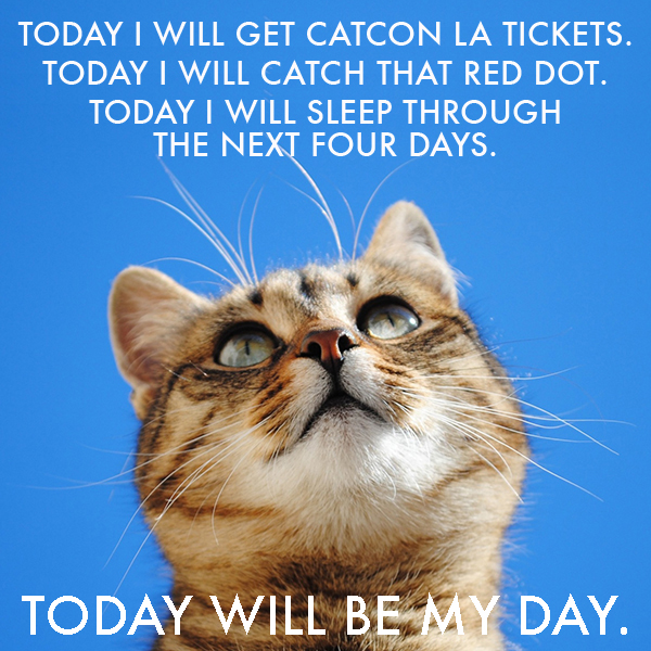 CatConLA Today