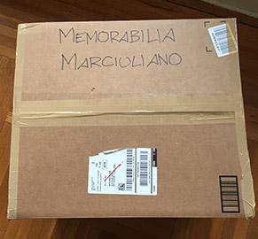 Moving Box Memorabilia Small