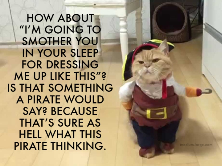 Pirate Cat Facebook 2
