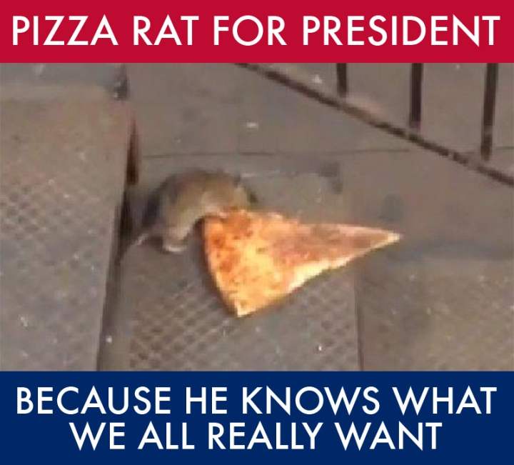Pizza Rat President