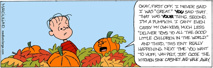 Peanuts Great Pumpkin Dream