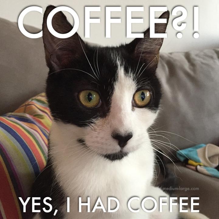 Kiki Coffee ML
