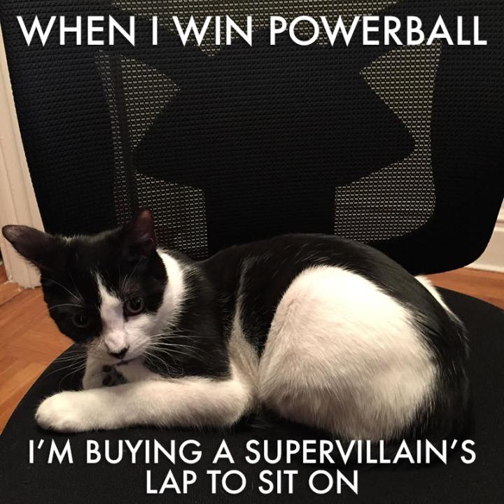 Kiki Supervillain Lap