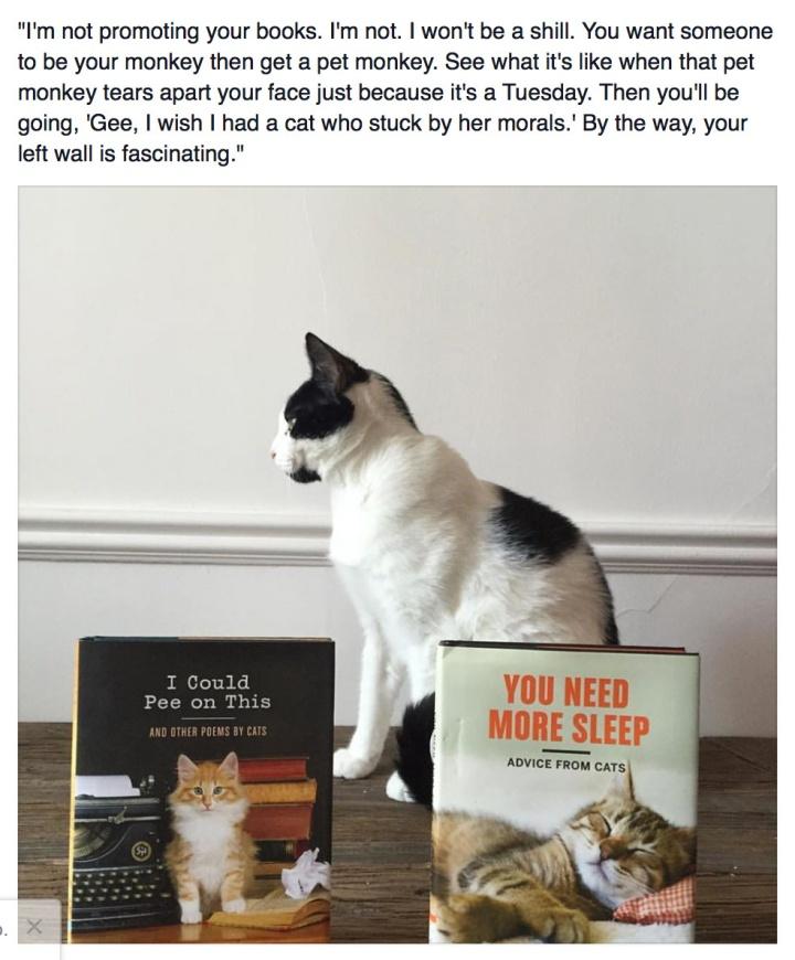 Leelo Cat Book Promo Denial