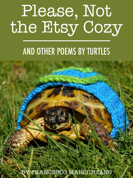 Turtle Poetry Book 2 copy