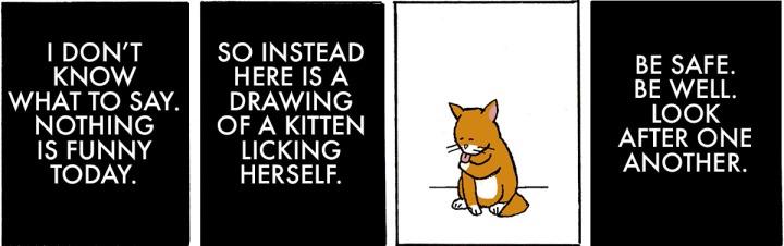 Cat Sad Sad Day