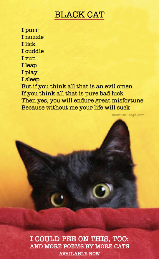 Black Cat Poem ICPOT Too ML