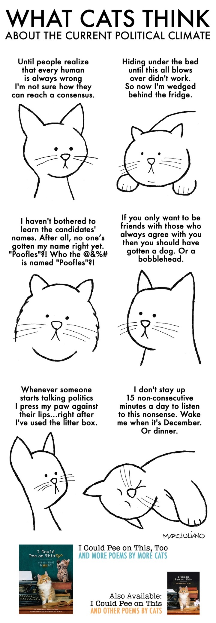 Cats Political Climate Promo
